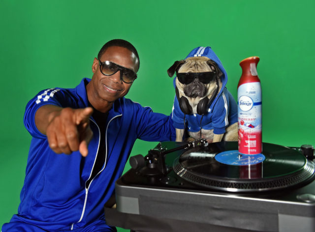 """In this image distributed Thursday, Nov. 10, 2016 for Febreze, beatboxer Doug E. Fresh and Instagram star @ItsDougThePug pose on the New York set of their music video for the hip-hop remix of Febreze's second annual """"The #12Stinks of Christmas."""" Following the success of last year's """"The #12Stinks of Christmas"""" music video, this funky fresh remix is available now on YouTube.com/Febreze. Eliminate stinks in a merry way all season long with Febreze's limited-edition holiday offerings. (Photo by Diane Bondareff/Invision for Febreze/AP Images)"""